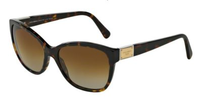 DOLCE & GABBANA LOGO PLAQUE DG4195 Havana / Brown Gradient Polarized